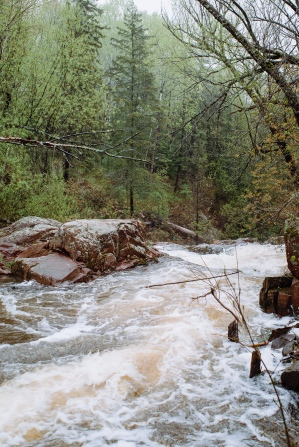 Tischer Creek 5-21-2017-1596